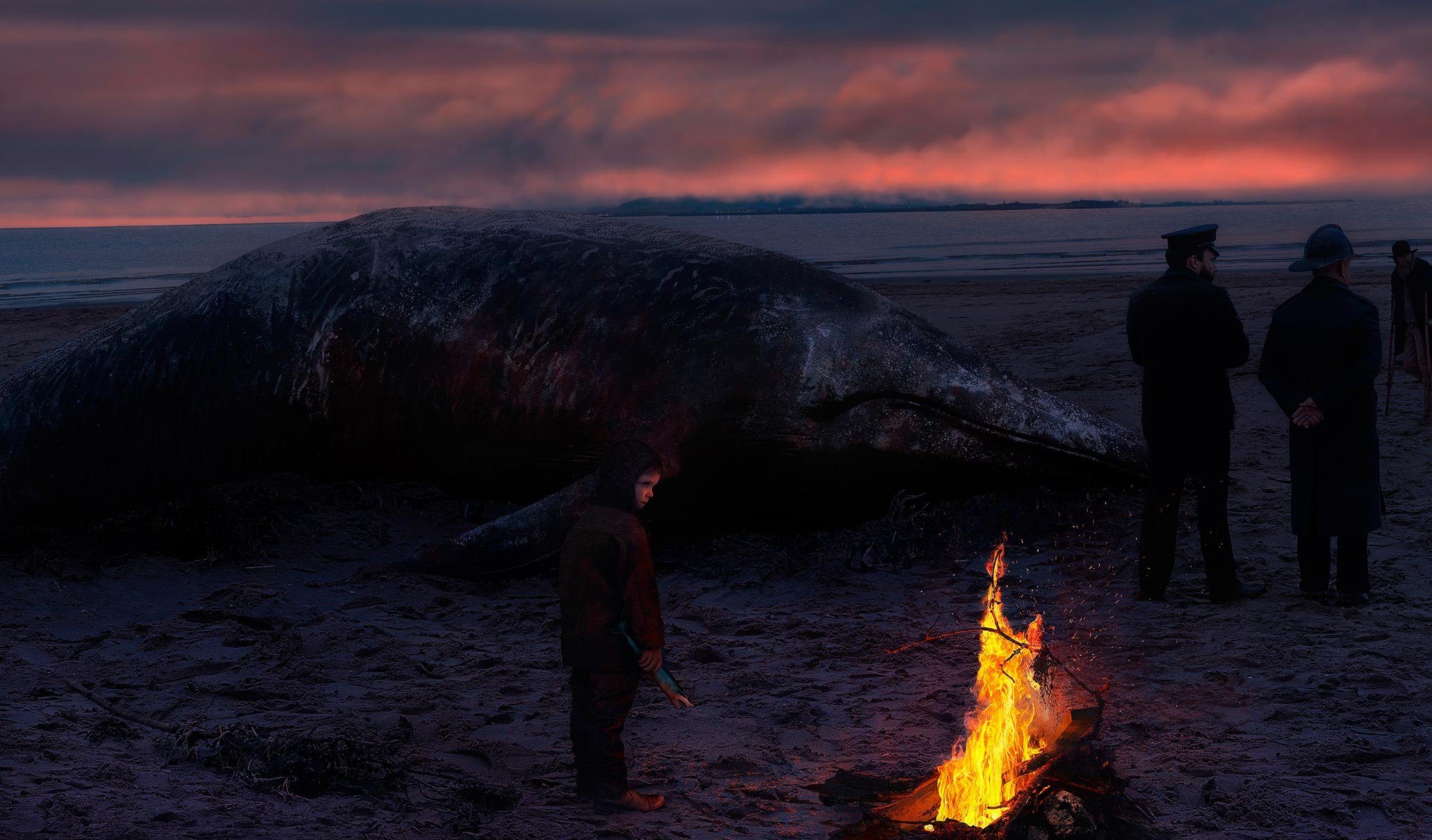Whale whashed up on the beach at night
